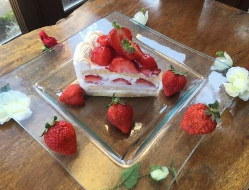 毎月22日は、スペシャルショートケーキの日