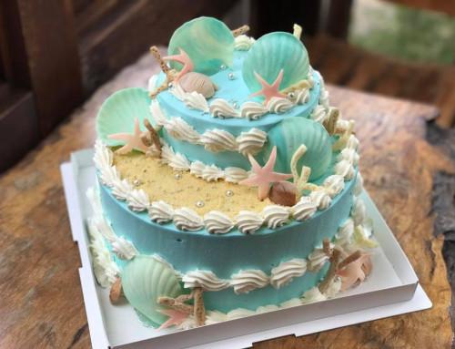 大鹿村のブルーベリーケーキ・オーダーケーキのご紹介です。