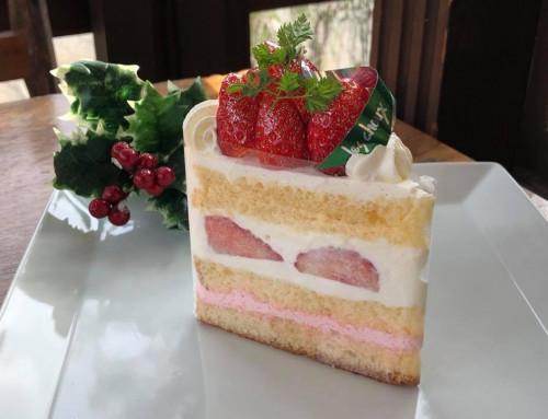 22日は、スペシャルショートケーキの日