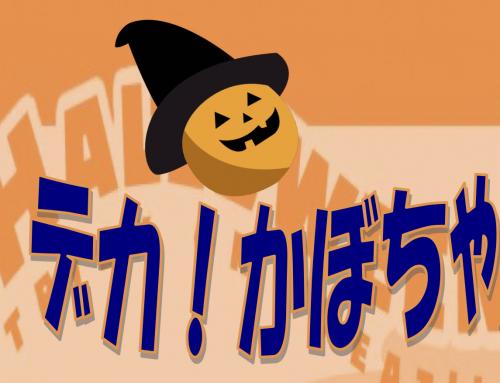 ハロウィン デカ!かぼちゃ 重さ発表