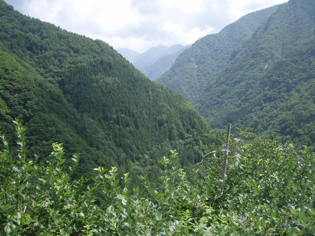 大鹿村の風景